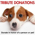 Tribute Donations