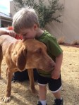 Boy kisses dog, new adopted pet