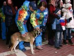 Russian  Dog At The Opening Ceremonies For The Sochi Olympics