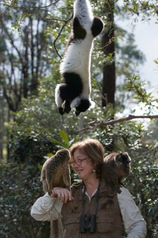 Island of Lemurs: Madagascar opens on April 4 in IMAX 3D. Photo Credit: Island of Lemurs: Madagascar