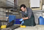 Ian Harding at The Fund for Animals Wildlife Center