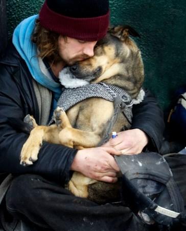 canada, homeless, homeless people, homeless pets, dogs, animal rights, animal welfare, toronto, sun media