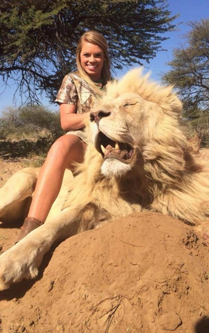 lion, africa, hunting, big game, kendall jones, texas tech