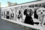 NKLA Around LA