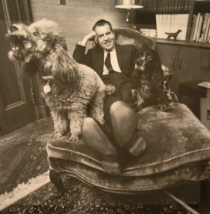 Pets, life with pets, dogs, cute dogs, President Nixon, past presidents, American Presidents, cocker spaniel