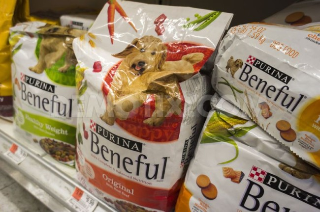 Purina stands by their argument that Beneful is a high-quality, nutritious meal. Photo credit: http://dailysavings.allyou.com/