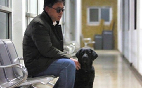 Masseur Tian Fengbo with his guide dog Qiaoqiao