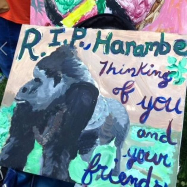 Photo Credit: Facebook - Justice For Harambe