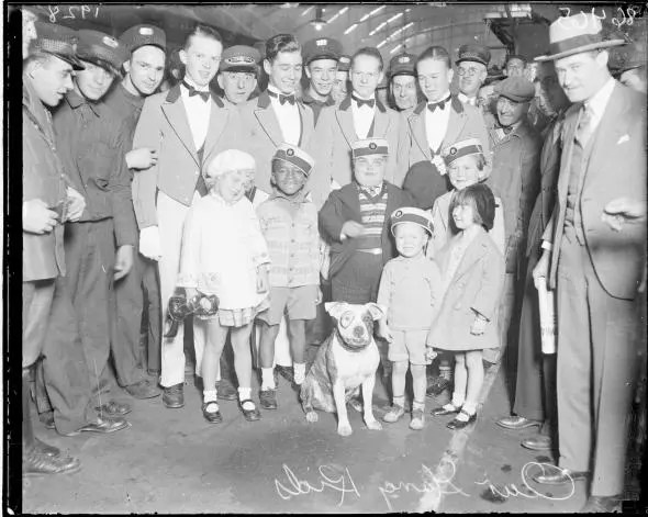 Petey, shown here in 1928 with child actors from the Our Gang comedy series, won the hearts of Americans and catapulted the pit bull to the high point of its popularity. Photo Credit: Chicago History Museum Via Getty Images