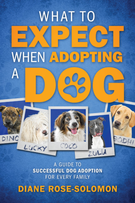 """What To Expect When Adopting a Dog"" by Diane Rose-Solomon"