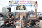 Animal welfare activists campaign around the world in protest dog meat market
