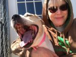 Diann Helmers fights for Pinky the abused, neglected dog's freedom
