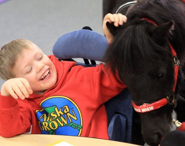 Miniature Horse Helps Boy With Special Needs