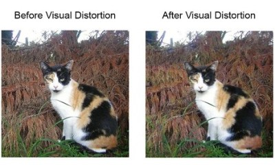 Enhancing Digital Privacy by Hiding Images from AI