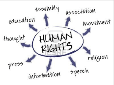 Institut de Drets Humans de Catalunya, Human Rights, Global Education Magazine