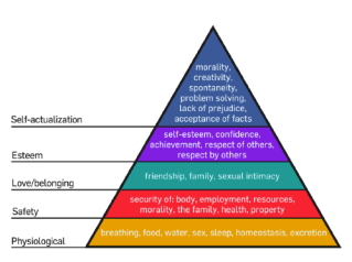 maslow research