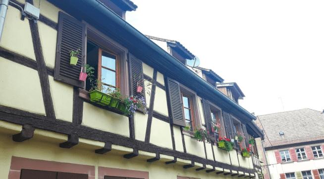 Beautiful flowerboxes
