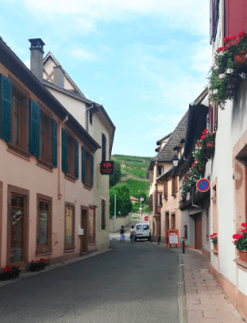 Streets leading to a vineyard