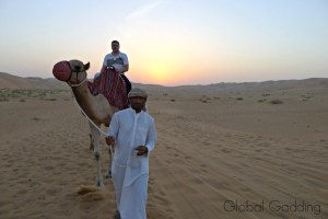 A SUNRISE CAMEL TREK THROUGH THE LIWI DESERT