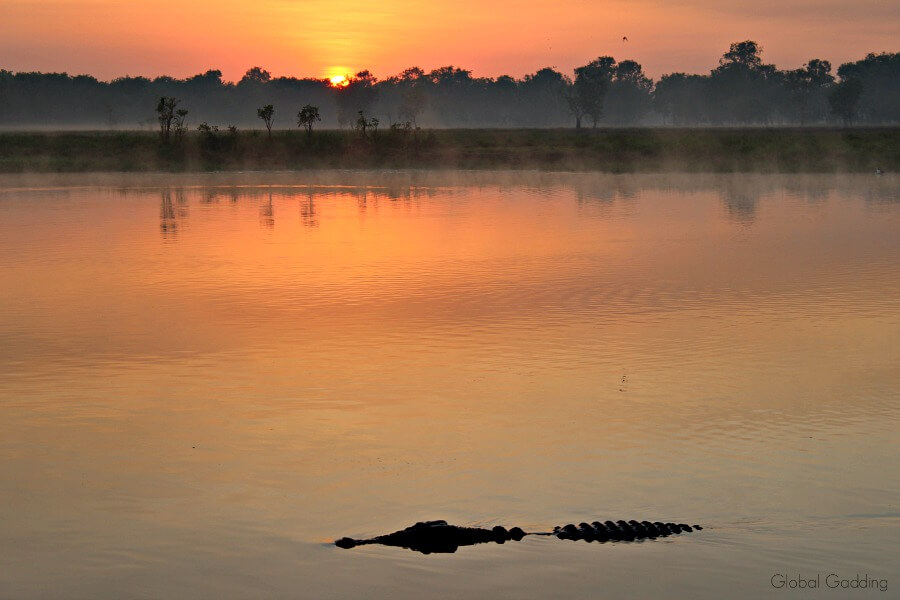 south alligator river