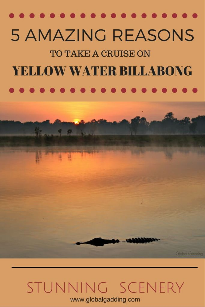 yellow water billabong sunrise cruise