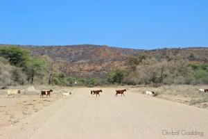 Namibia Road Trip – Drive Time On Namibia Roads