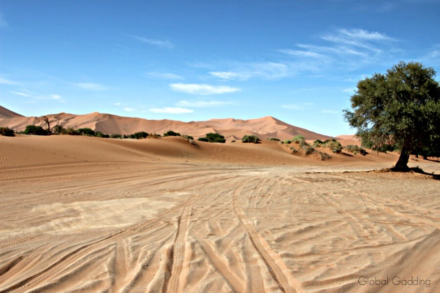 Driving In Sand At Sossusvlei Namibia