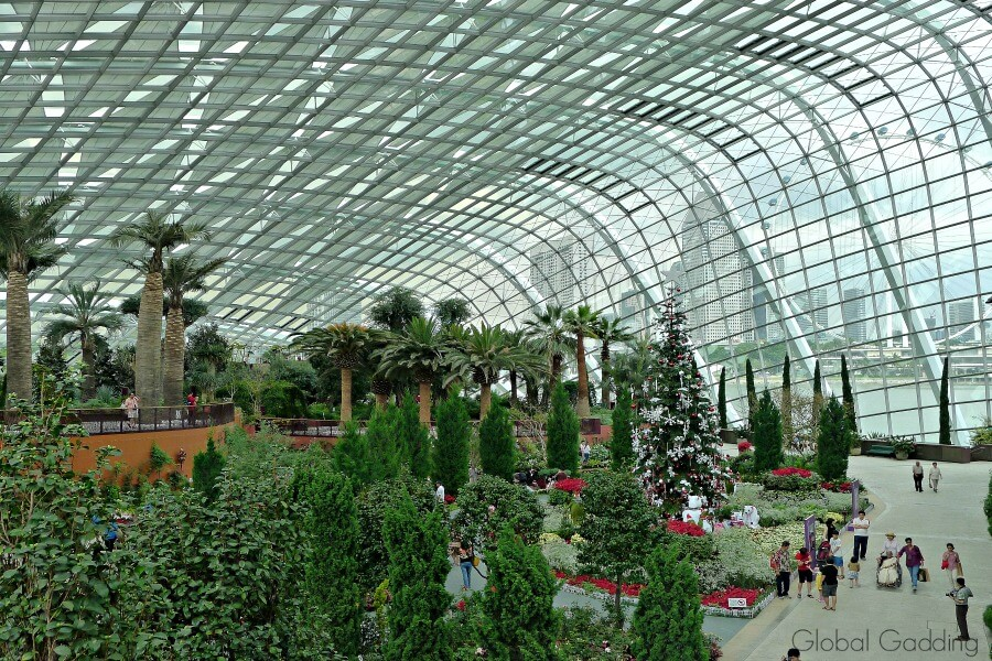 3 day guide to singapore flower dome