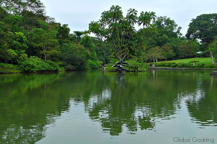 3 day guide to Singapore, botanic gardens swan lake