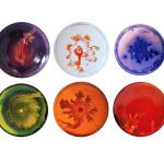 Vik Muniz Set of 6 dinner plates - Interior Art