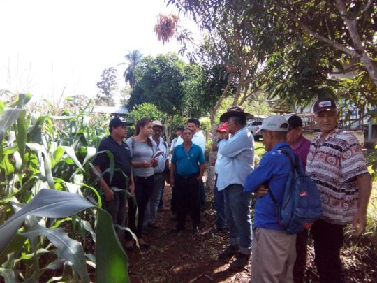 Farmers evaluate the double groove application