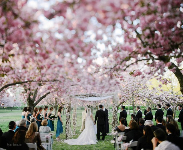 Top 6 venues you ll want to wed in new york for Unusual wedding venues nyc