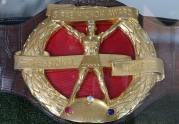In 1960 Palmer won the Hickok Belt, given to the country's top sports figure.