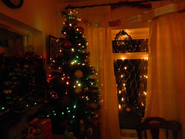 Our fibre optic lighted Xmas tree