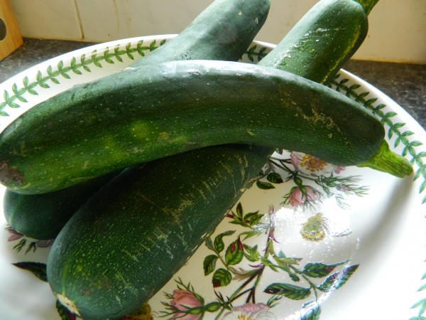 Courgette, Photo by JMorton