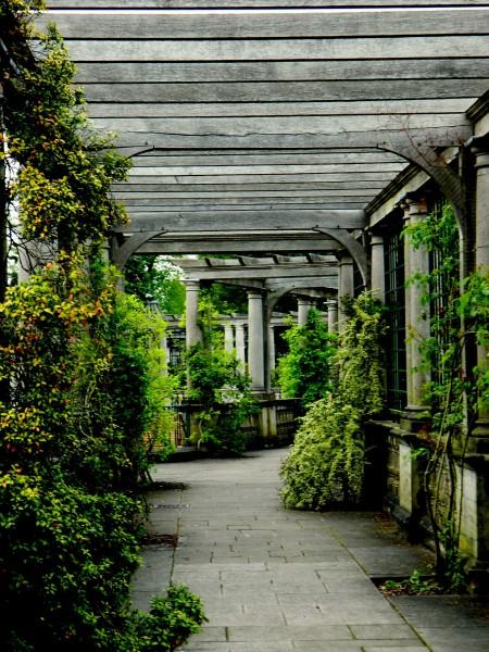 pergola corridor, photo by PH Morton