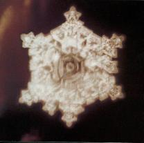 Structured water molecule after being exposed to Beethoven's Pastorale. From 'The Message From Water' by Masaru Emoto.