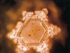 A structured water molecule after exposure to positive language with name of positive deceased person 'Mother Teresa' placed on glass container of water. From 'The Message From Water' by Masaru Emoto.