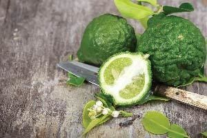 A slice of bergamot orange. The essential oil extracted from bergamot oranges provides many health benefits.
