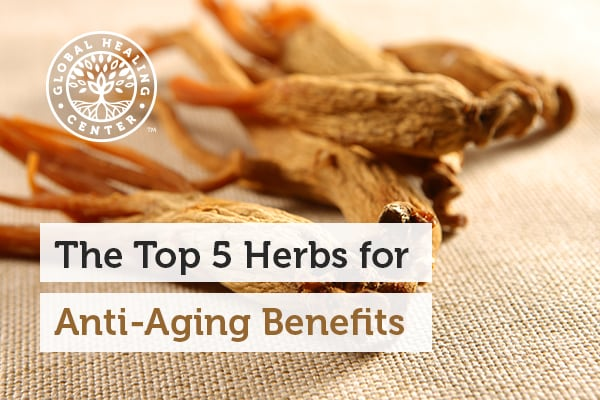 Ginseng is one of the best herbs for anti-aging benefits.