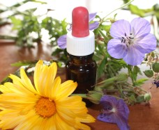 Homeopathy – What Is It?