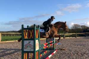 Evie Toombes showjumping