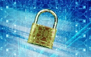 Making Data Security a Priority for Your Business