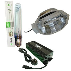 Lumii Digita 600w Focus System With Lamp