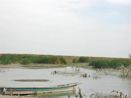 Tchadsjön