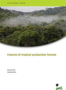 Futures of tropical production forests