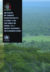 Benefits of Forest Ecosystems in Zambia and the role of REDD+ in a Green Economy Transformation