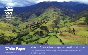 How to finance landscape restoration at scale: The importance of enabling and impact investments in Initiative 20×20