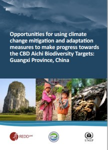 Opportunities for using climate change mitigation and adaptation measures to make progress towards the CBD Aichi Biodiversity Targets: Guangxi Province, China
