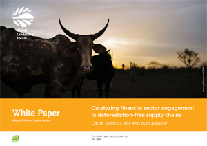 Catalyzing financial sector engagement in deforestation-free supply chains: Cattle, palm oil, soy and pulp & paper
